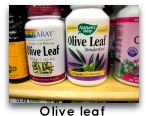olive leaf for yeast infection picture